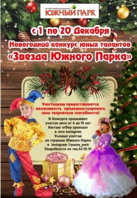 /novosti-i-aktsii/item/1558-novogodnij-konkurs-yunykh-talantov-zvezda-yuzhnogo-parka