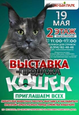 /novosti-i-aktsii/item/1665-vystavka-koshek