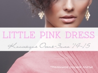 Little Pink Dress Lady Collection